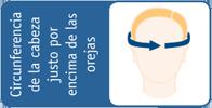 como tomar medidas casco craneal orliman h100